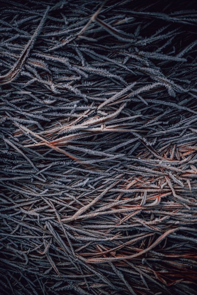 Er stål det stærkeste materiale i verden?